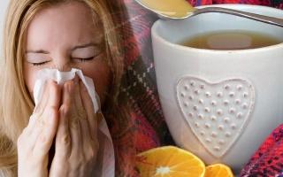 Chřipkové epidemie