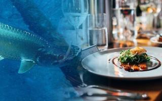 Otrava pasivně jedovatými rybami
