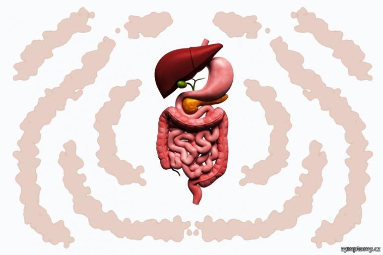 Pomalý metabolismus