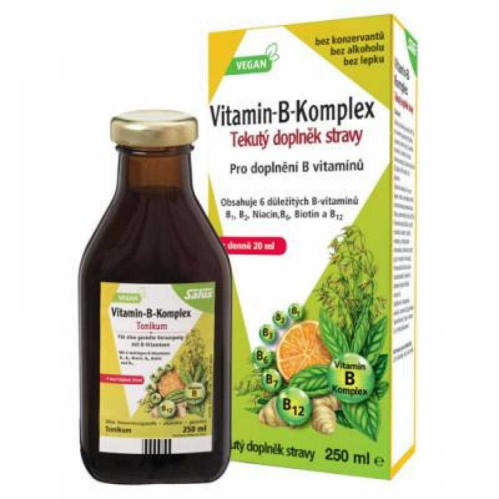 SALUS Vitamin B-komplex 250 ml