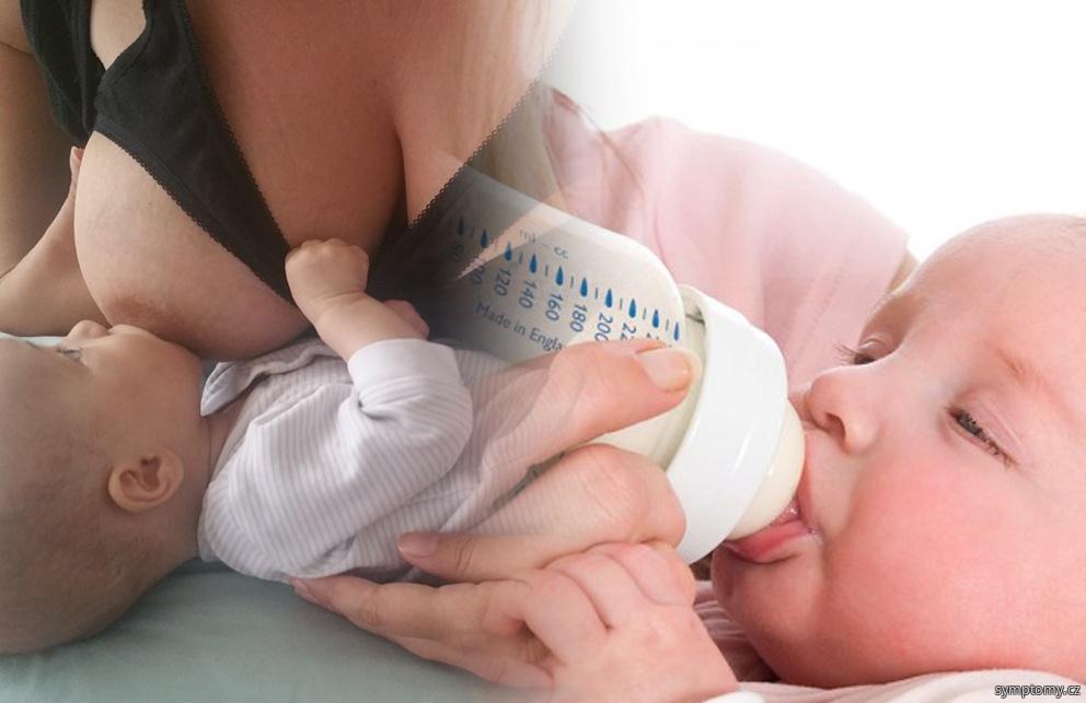 kojení a umělá výživa